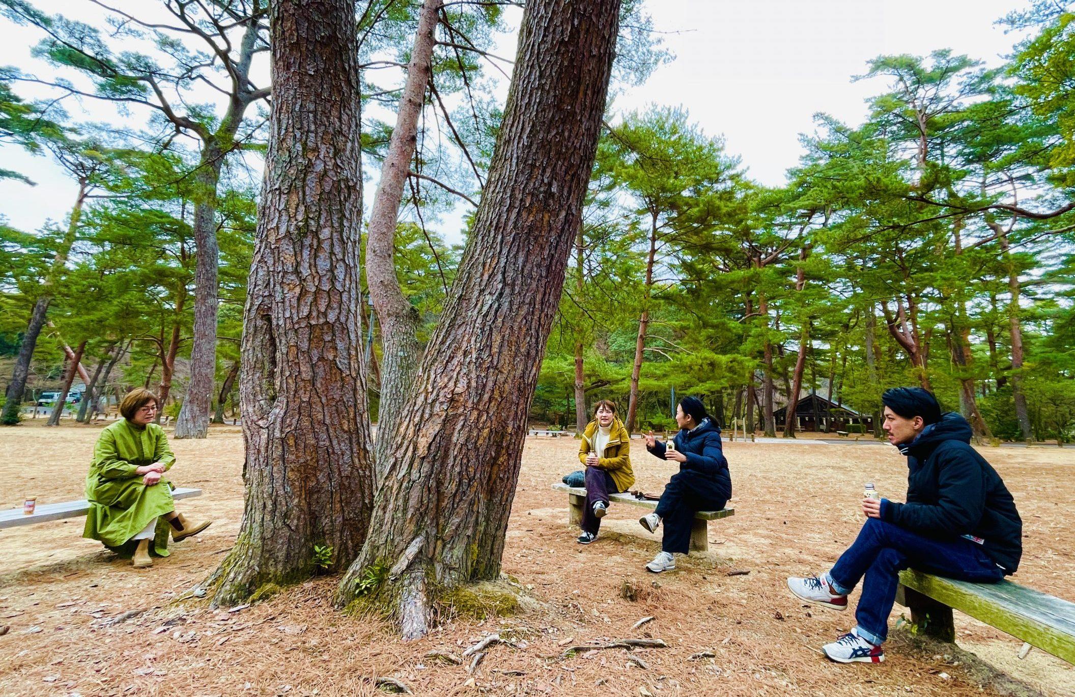 寒い日の大きな木の下で